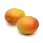 R2E2 Mango 1s